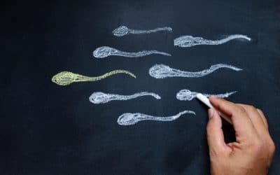 What the Path to Infertility Treatments Looks Like