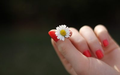 Brittle Nails Are a Problem: Learn the Symptoms, Causes, and Cures